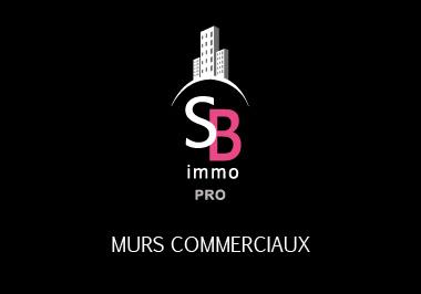 Vente Immobilier Professionnel Murs commerciaux Mèze 34140