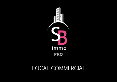 Vente Immobilier Professionnel Local commercial Baillargues 34670